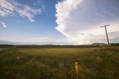 Uprawiać ziemię pole w Toowoomba, Australia Obrazy Stock