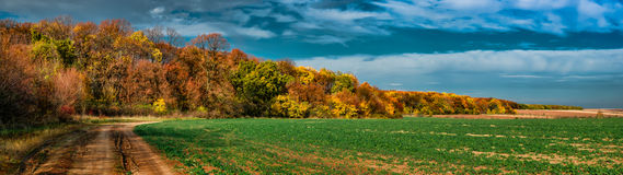Uprawiać ziemię przy lasową krawędzią Fotografia Stock