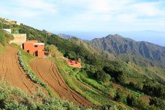 Uprawiać ziemię Tenerife Fotografia Stock