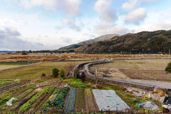 Uprawiać ziemię teren w Kyoto Japonia zdjęcie stock