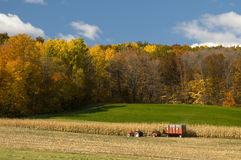 Uprawiać ziemię w jesieni Zdjęcie Stock