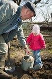 uprawia ogródek jego kuchennego chłopa Obraz Stock