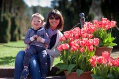 uprawia ogródek jej małych macierzystych syna tulipanu potomstwa Zdjęcia Stock