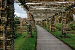 uprawia ogródek kew Obrazy Royalty Free
