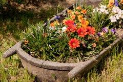 Uprawia ogródek, kwiaty, pastoralni, dom wiejski, chałupa Zdjęcie Royalty Free
