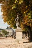 uprawia ogródek Luxembourg Paris Zdjęcie Stock