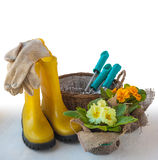 Uprawia ogródek spokojnego życie z pierwiosnkiem, butami i ogrodowymi narzędziami, Zdjęcia Royalty Free