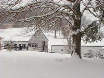 uprawia ziemię śnieżną zima Zdjęcie Stock