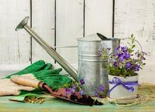 Uprawiający ogródek narzędzia na białym drewnianym tle - wiosna Zdjęcie Stock