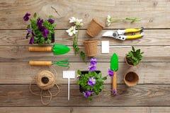 Uprawiający ogródek narzędzie, łopata, secateurs, świntuch, nameplate, kwiaty, rośliny, arkana, na rocznika drewnianym stole Wios zdjęcia royalty free