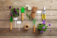 Uprawiający ogródek narzędzie, łopata, secateurs, świntuch, nameplate, kwiaty, rośliny, arkana, na rocznika drewnianym stole Wios zdjęcie royalty free