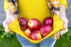 Uprawiający ziemię, uprawiający ogródek, zbierający, spadku i ludzie pojęcia, - kobieta z jabłkami przy jesień ogródem zdjęcia stock