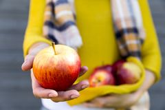 Uprawiający ziemię, uprawiający ogródek, zbierający, spadku i ludzie pojęcia, - kobieta z jabłkami przy jesień ogródem zdjęcie royalty free