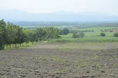 Uprawiający ziemię w Mahayahay, Hagonoy, Davao Del Sura, Filipiny fotografia royalty free