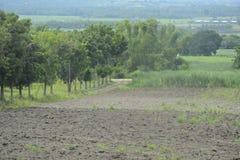Uprawiający ziemię w Mahayahay, Hagonoy, Davao Del Sura, Filipiny zdjęcia stock