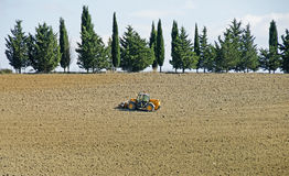 Uprawiający ziemię w Tuscany, Włochy Obrazy Stock