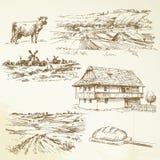Uprawiający ziemię, wiejski krajobraz Zdjęcia Stock