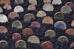 uprawy żyzny rok fedrunek zdjęcie royalty free