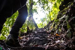 Uprawy osoba chodzi w górę naturalnych schodków fotografia royalty free
