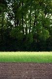 uprawy wirują Zdjęcie Royalty Free