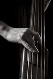 Upright Bass Royalty Free Stock Photography
