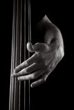 Upright bass Stock Image