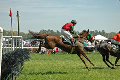 Upright and locked position. Horse and rider come in for a landing after a steeplechase jump Stock Photos