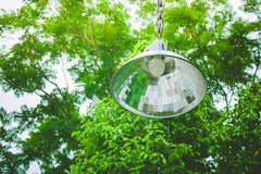 Uprisen view of vintage lamp hanging on green branches tree in the garden. royalty free stock photography