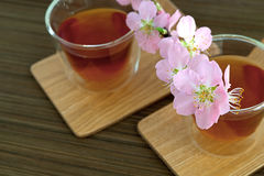Сups of tea with blossom branch Stock Photography