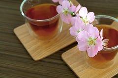 Сups of tea with blossom branch. Сups of tea with blossom pink flowers cherry branch. Selective focus Stock Photography