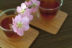 Сups of tea with blossom branch. Сups of tea with blossom pink flowers cherry branch. Selective focus Stock Image