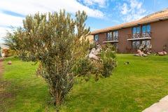 Upscale hotel and Inviting Courtyard  on lake Titikaka, Peru in South America Stock Photo