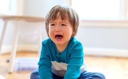 Crying toddler boy. Upset crying and mad little toddler boy stock photography