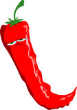 Upset red hot chili pepper Royalty Free Stock Photo