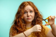 Upset and woman with her damaged dry hair face expression blue background. Redhaired young woman cutting her damaged dry hair with scissors over blue background royalty free stock photos
