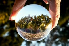 Upside down landscape of beautiful sunny forest with woman`s hand stock photography