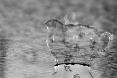 Upside Down Teacup Stock Photo