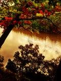 Upstate jesień Zdjęcia Stock
