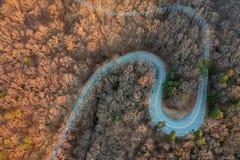 Upstate Południowa Karolina pogórza przy świtem zdjęcie stock