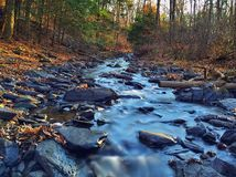 Upstream. Looking up a stunning woodland stream Stock Photography