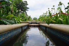 Upstream Royalty Free Stock Photo