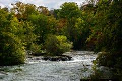 Upstream river of Niagara falls. NY, USA. Colorful trees on the background Royalty Free Stock Photo