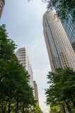 Uptown Charlotte, North Carolina Cityscape Stock Images