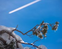 Icicles sky royalty free stock image