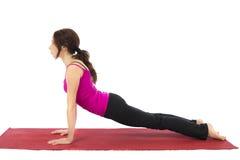 Upward Facing Dog Pose in Yoga royalty free stock photo
