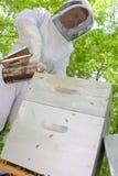 Upward view beekeeper using smoker Royalty Free Stock Photo