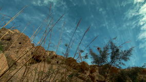 Upwards view of ein gedi falls. Video of upwards view of ein gedi falls stock footage