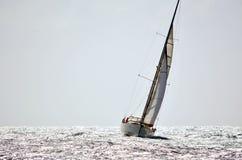 Upwind het varen Stock Foto