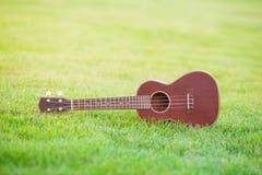 Uquelele de madeira arquivada sobre da grama verde Fotos de Stock Royalty Free