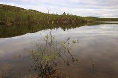 The Ura river in tundra Stock Photos